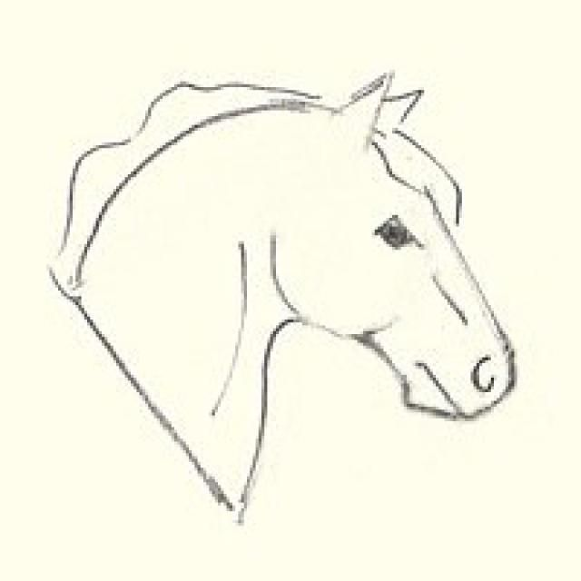 Simple Horse Head Drawing at GetDrawings Free for personal use