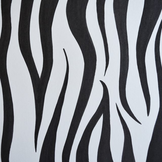 Zebra Print Drawing at GetDrawings Free for personal use Zebra
