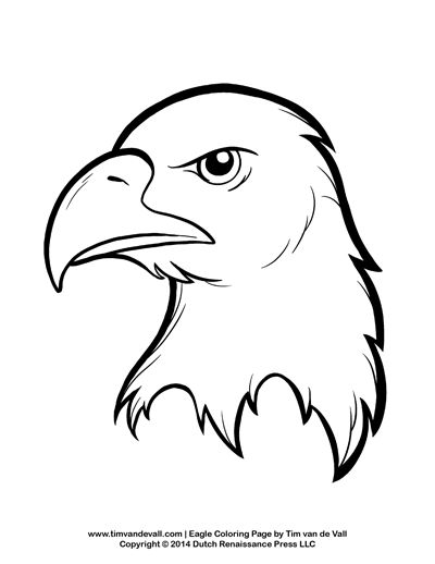 Bald Eagle Easy Drawing at GetDrawings Free for personal use