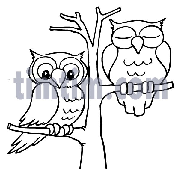 Easy Cute Owl Drawing at GetDrawings Free for personal use