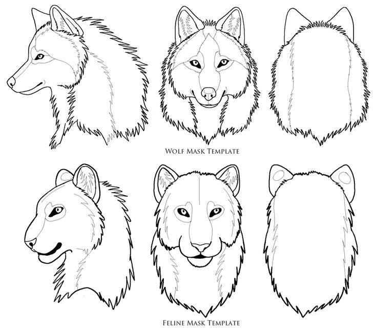 Face Drawing Templates at GetDrawings Free for personal use
