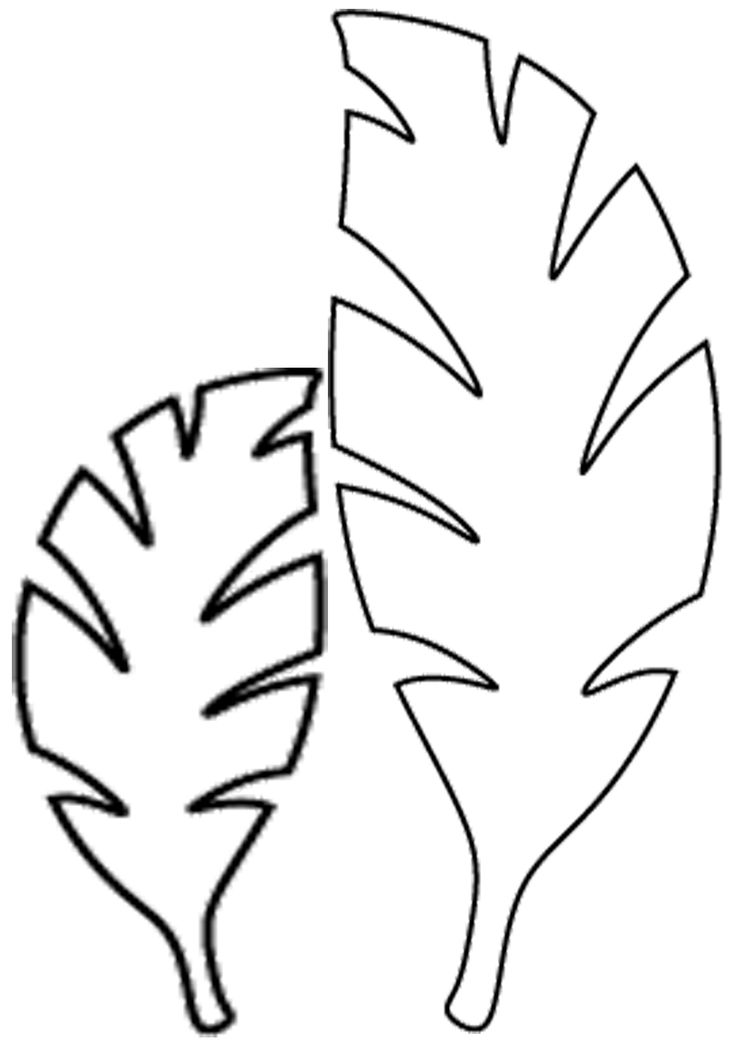 Jungle Leaves Drawing at GetDrawings Free for personal use - leaf template