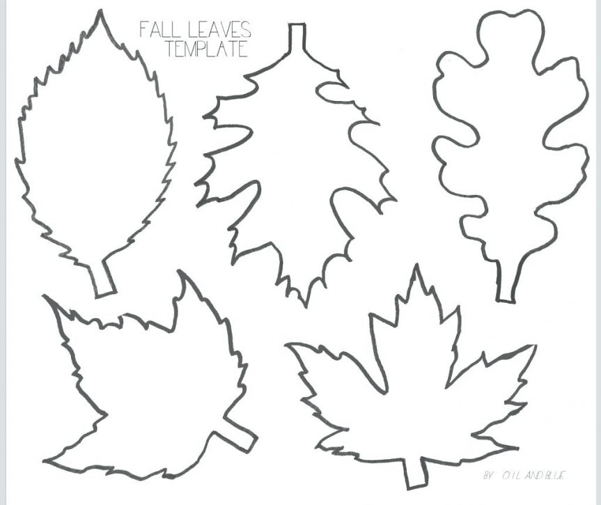 Leaf Patterns Drawing at GetDrawings Free for personal use
