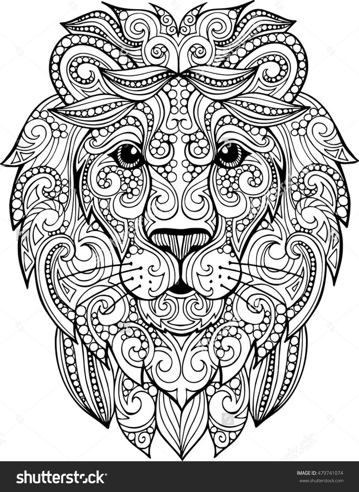 Lion Realistic Drawing at GetDrawings Free for personal use