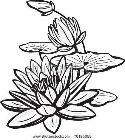 Lotus Flower Drawing Images at GetDrawings Free for personal - line drawing