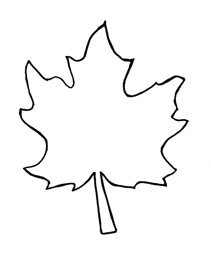 Maple Leaf Drawing Template at GetDrawings Free for personal - leaf template