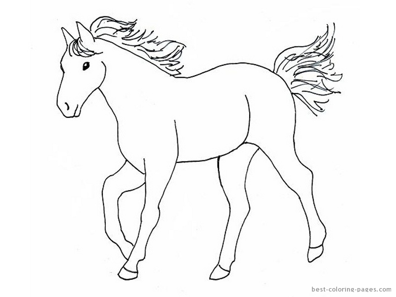 Horse Head Template Printable - Best Place to Find Wiring and