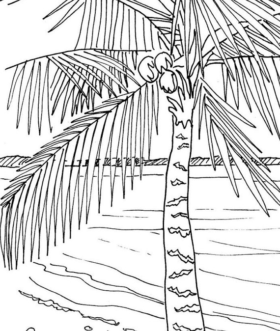 Palm Tree Sunset Drawing at GetDrawings Free for personal use