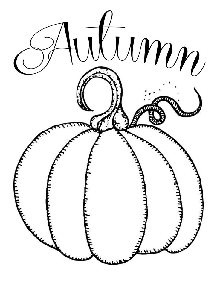Pumpkin Template Drawing at GetDrawings Free for personal use
