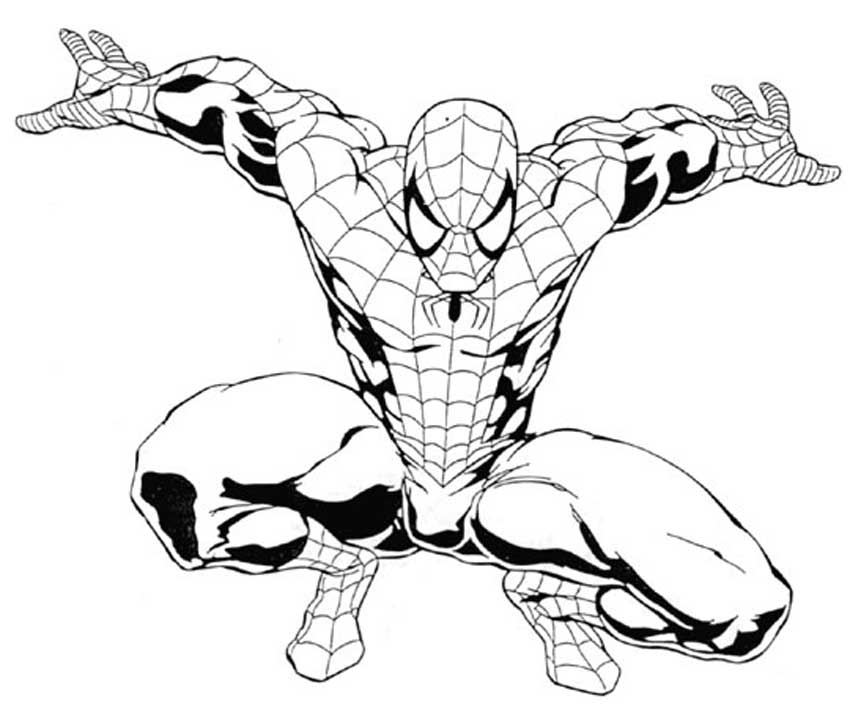 Spiderman Outline Drawing At Getdrawingscom Free For