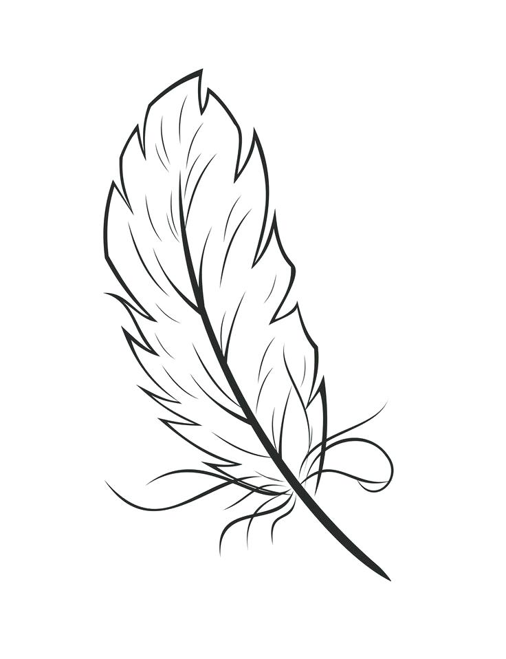 Turkey Feathers Drawing at GetDrawings Free for personal use