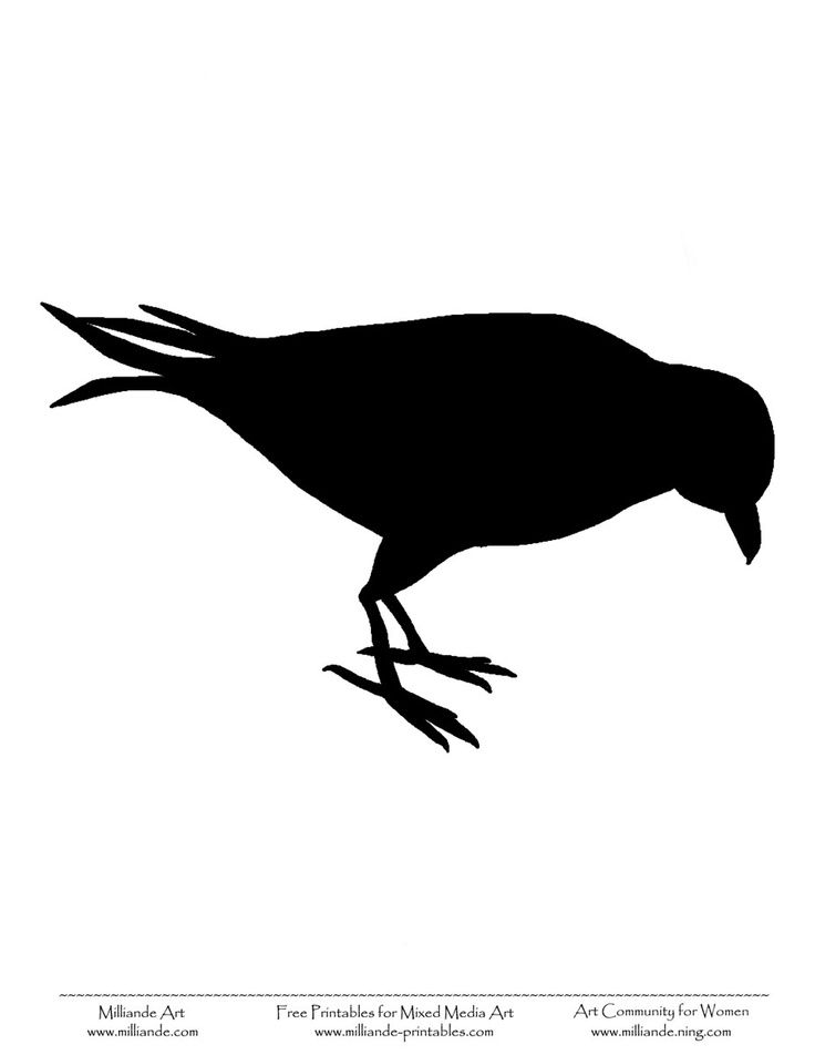 Bird Sitting Silhouette at GetDrawings Free for personal use