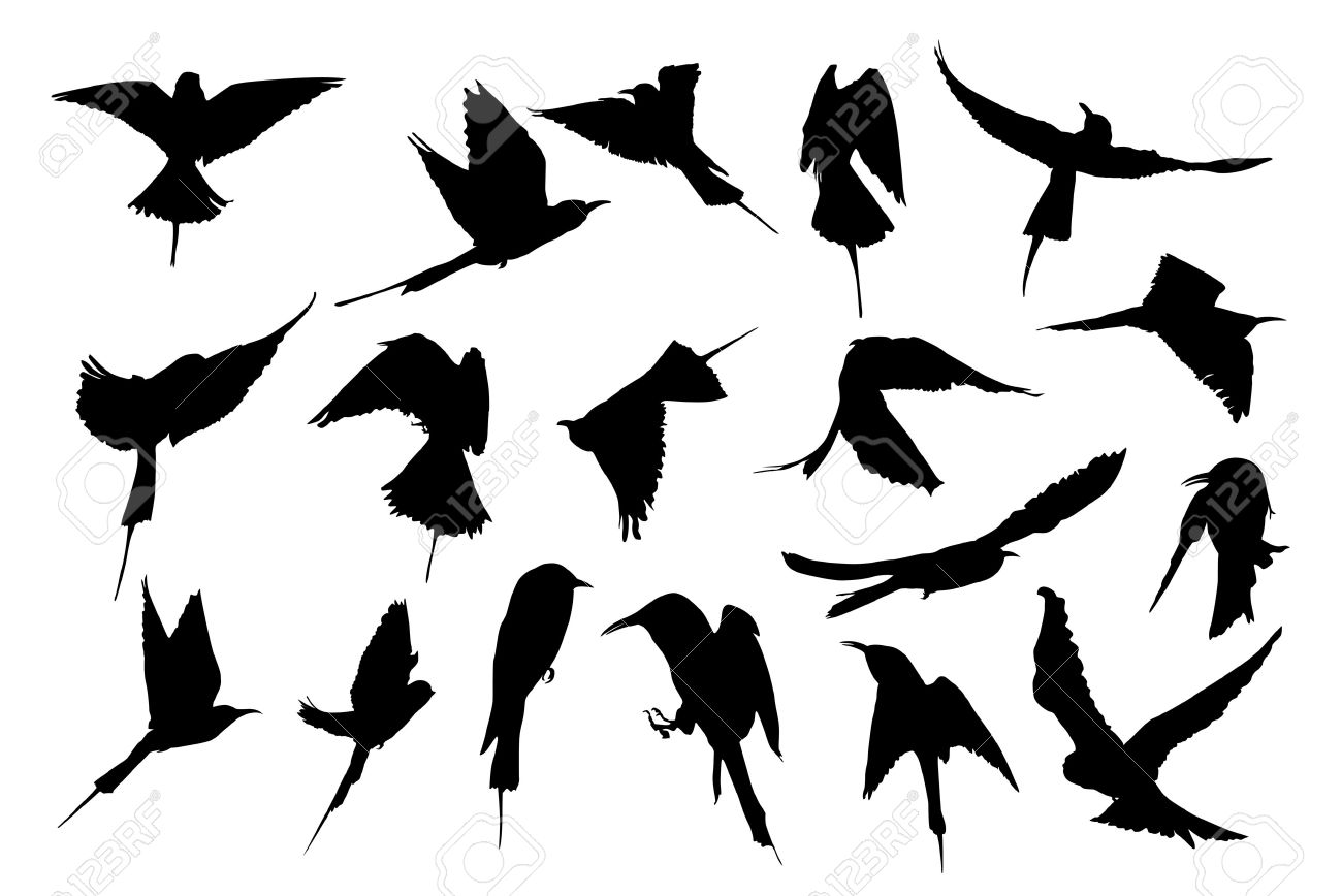 free free flying bird silhouettes psd files vectors