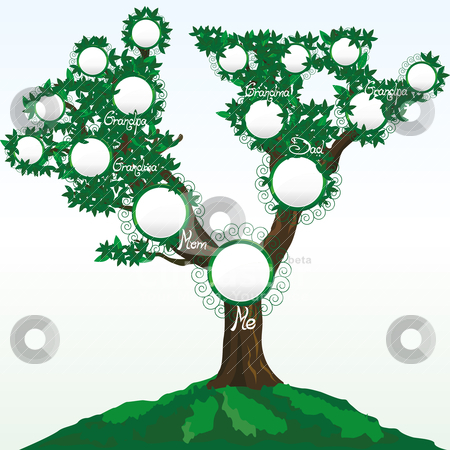 Family Tree Vector Free Download colbro