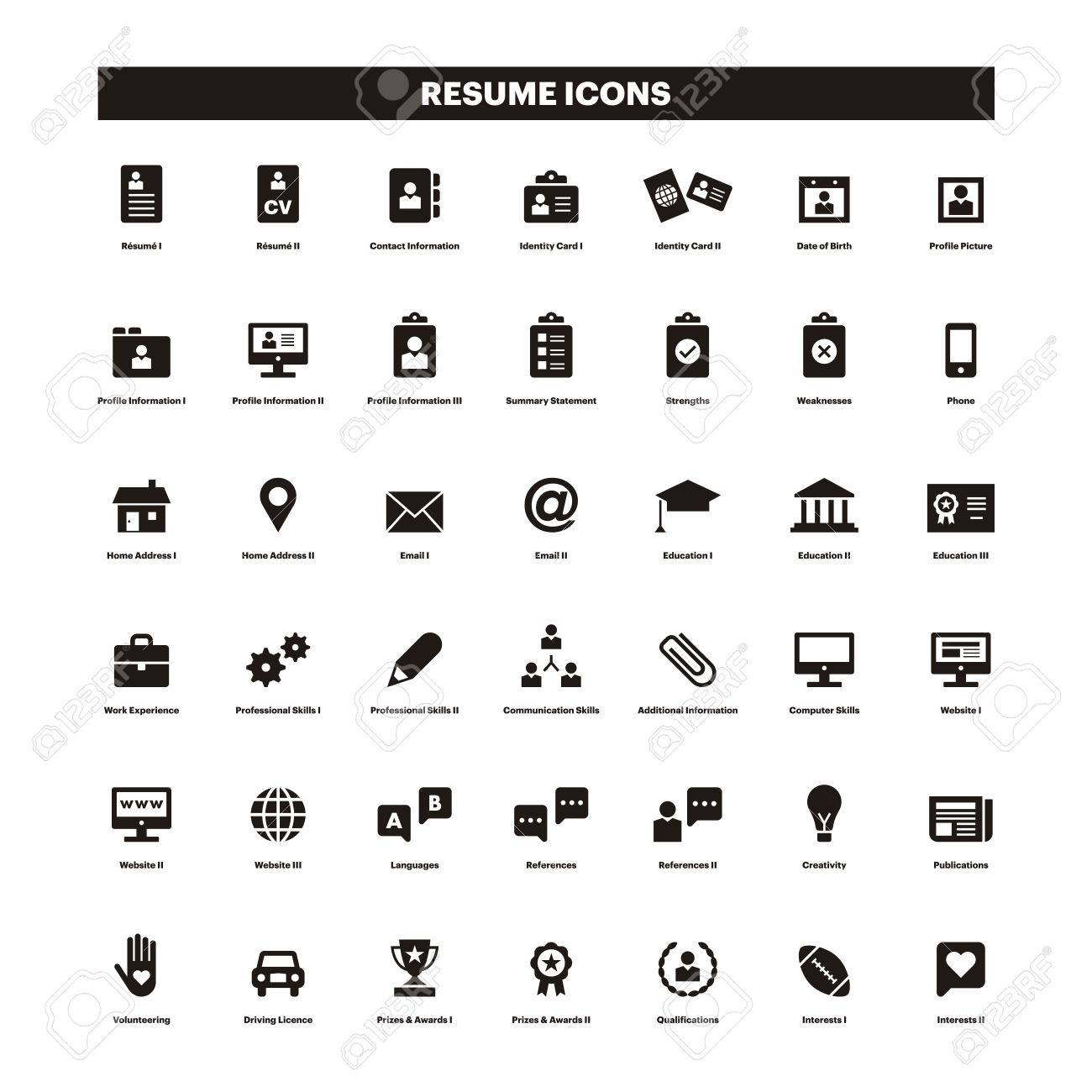 sample resume with icons