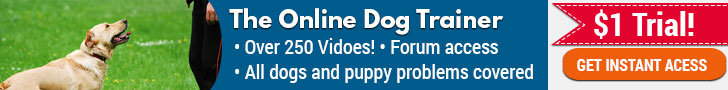 Doggy dan online dog trainer review banner-6