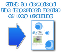 Dog-Training-Basics-FREE-download