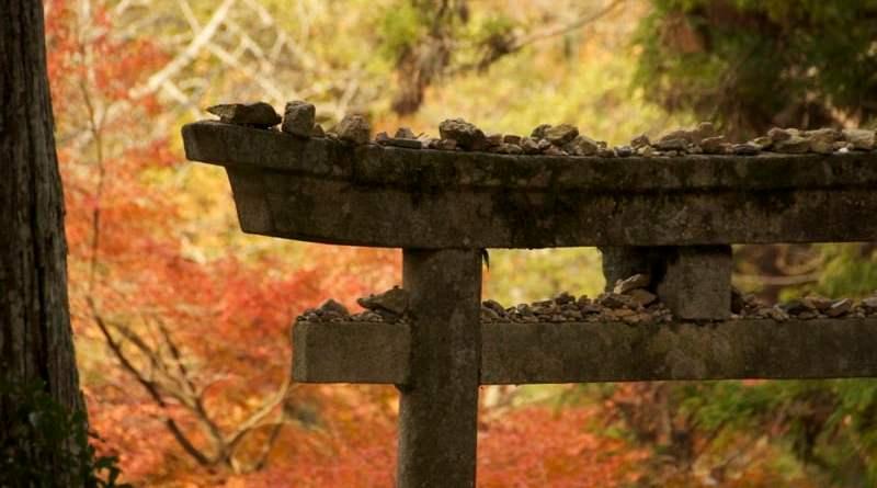 Autumn leaves behind a stone torii gate at Shinomiya Shrine in Momiji-dani on Miyajima in Hiroshima, Japan