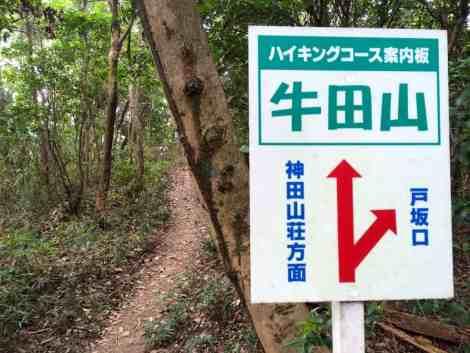 Ushita-yama to Mitate-yama - 06