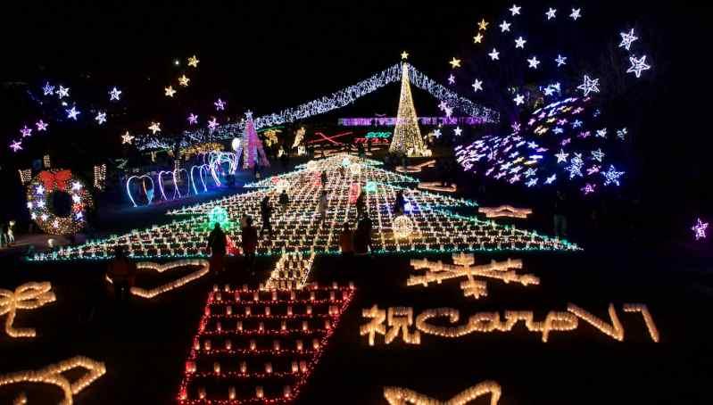 christmas-illuminations-at-hiroshima-botanical-gardens