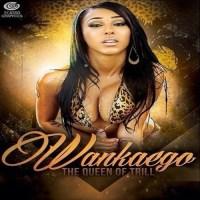 WanKaego (@Wankaego) | Flowers [Music]