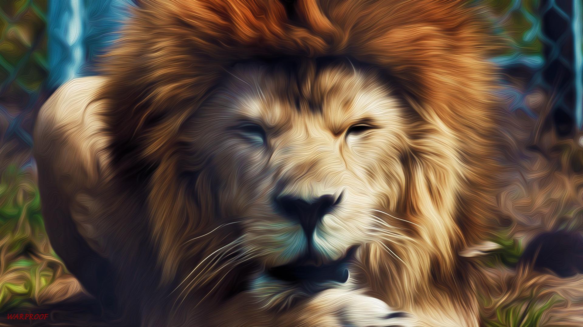 Rasta Lion Wallpaper Iphone Lion Of Judah Wallpapers 64 Images