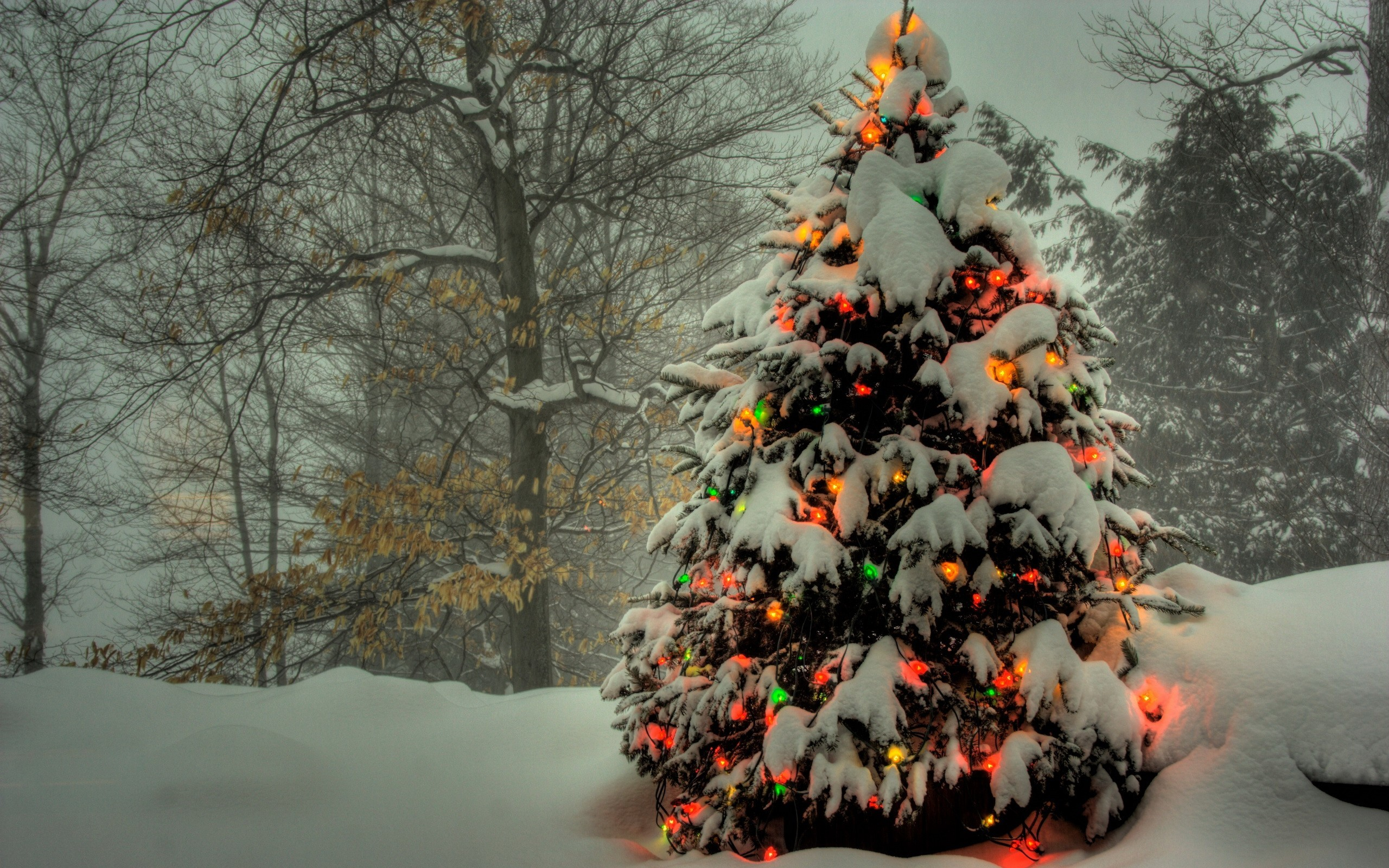 Live Snow Falling Wallpaper For Desktop Christmas Wallpaper Moving Snow Falling 72 Images