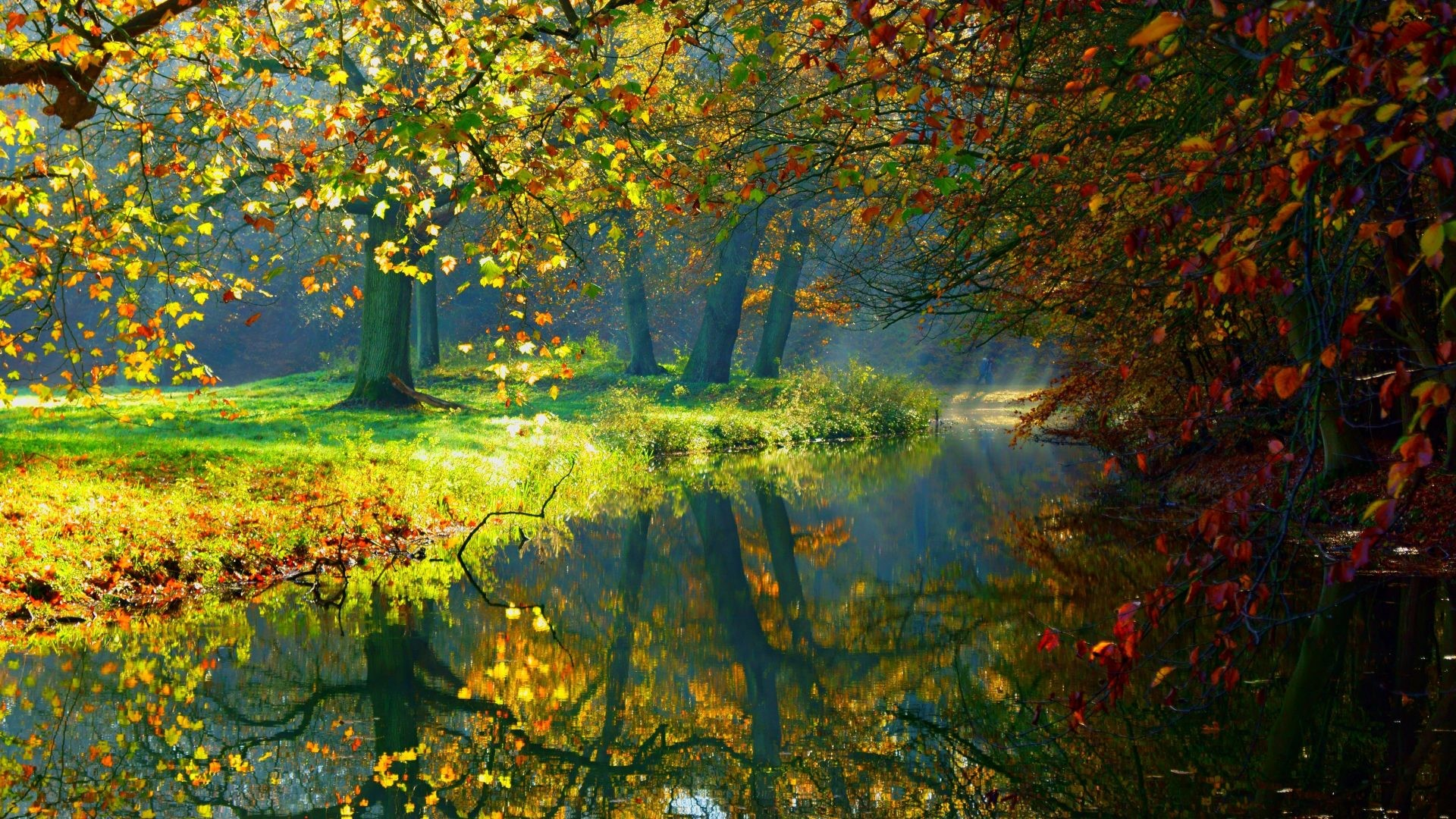 Colorful Fall Scene Wallpaper 3d Fall Wallpaper 61 Images