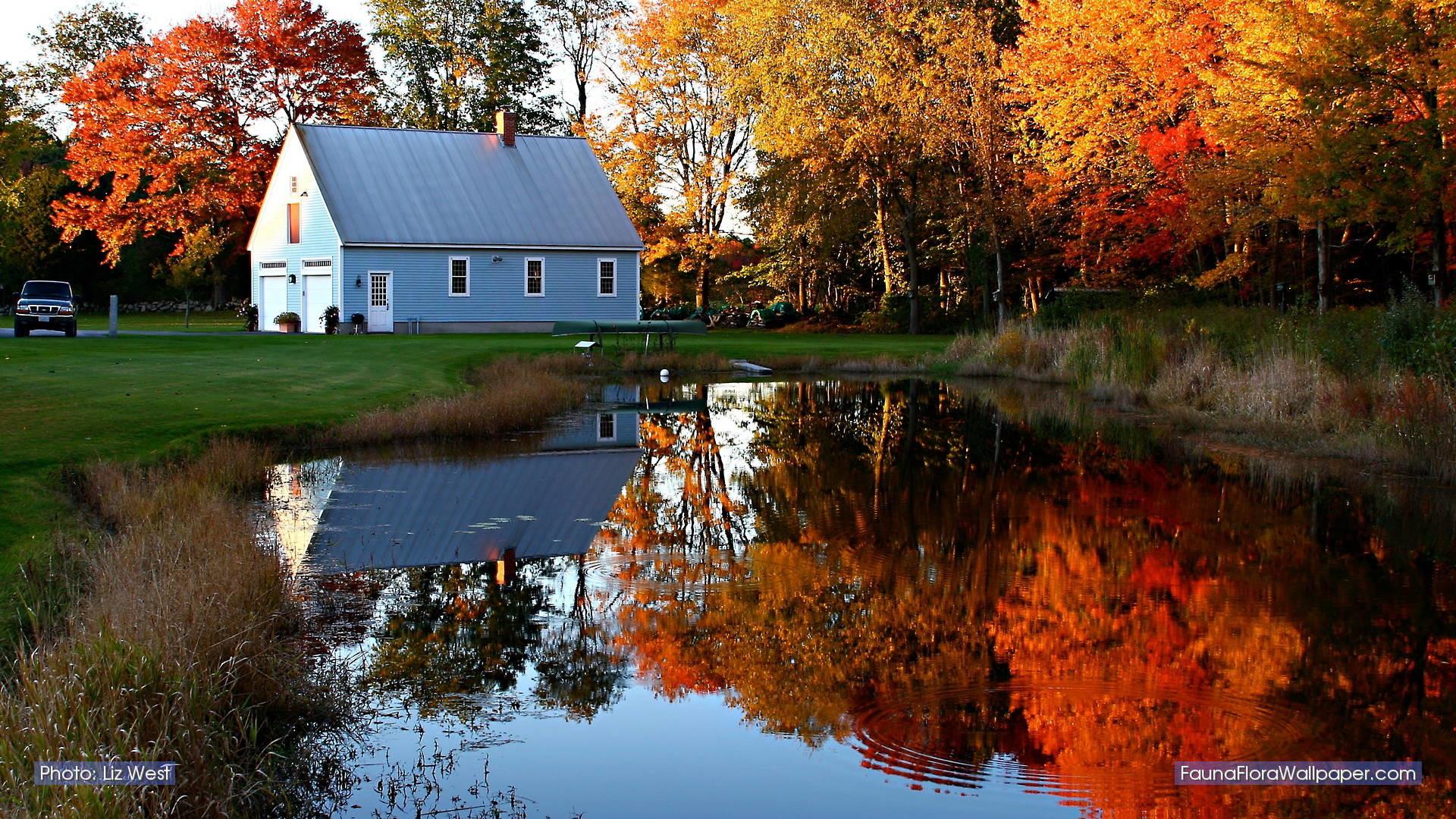 New England Fall Computer Wallpaper New England Fall Wallpaper 36 Images