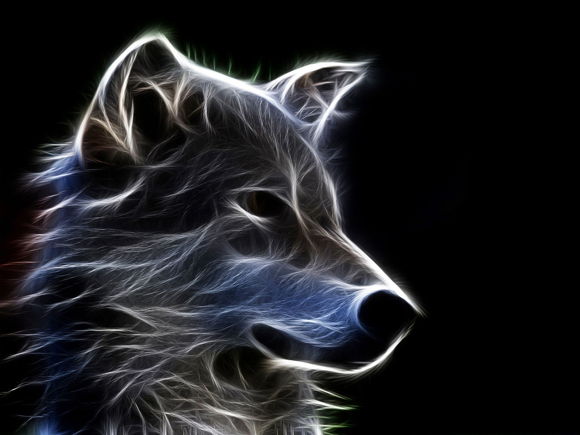 Download Animated Wallpapers For Mobile Phone Yin Yang Wallpaper Wolf 44 Images