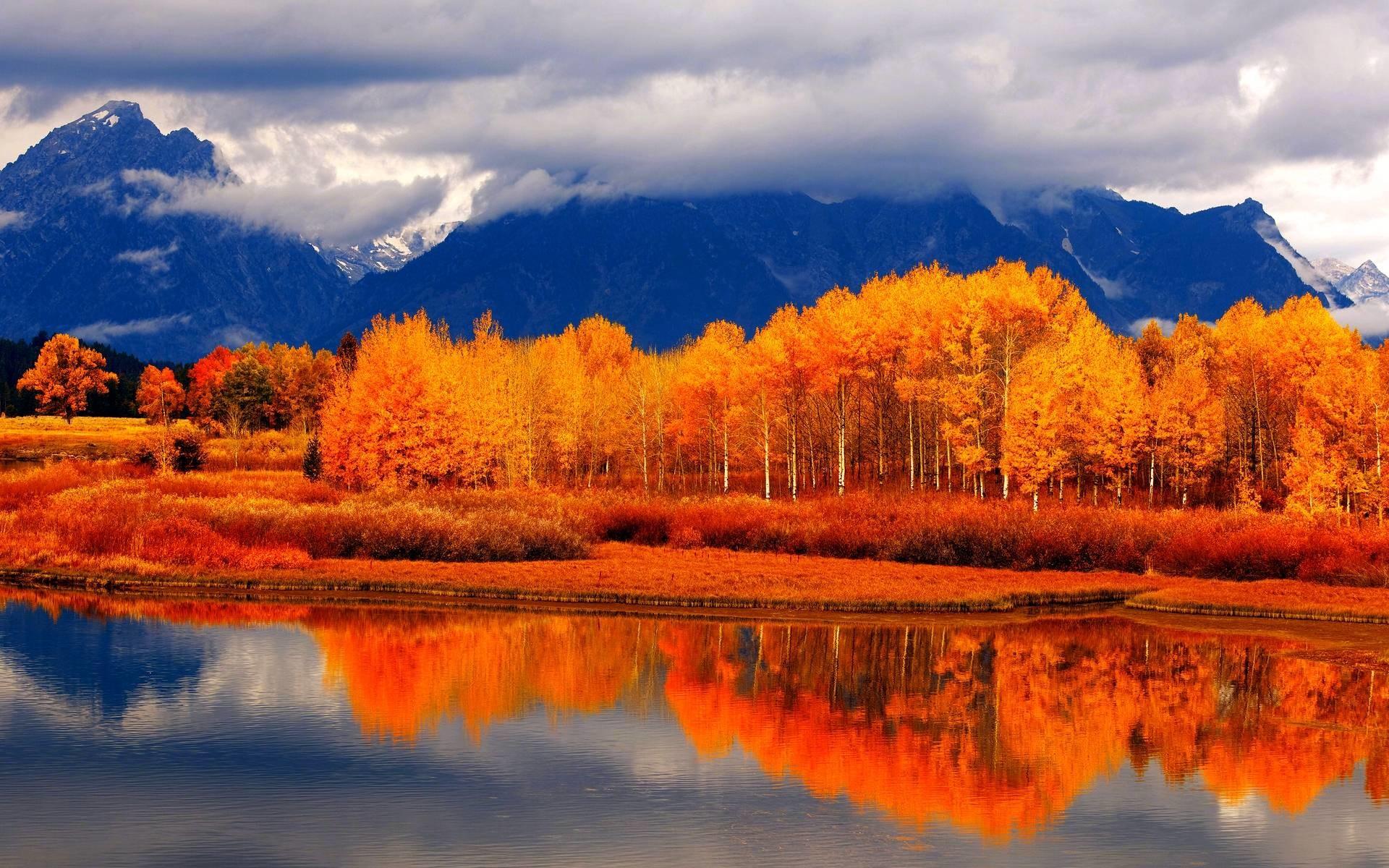 Free Fall Desktop Wallpaper For Mac Fall Wallpapers 59 Images