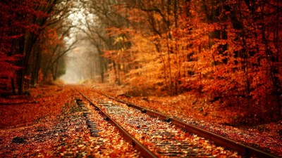 1920x1080 HD Autumn Wallpapers (61+ images)