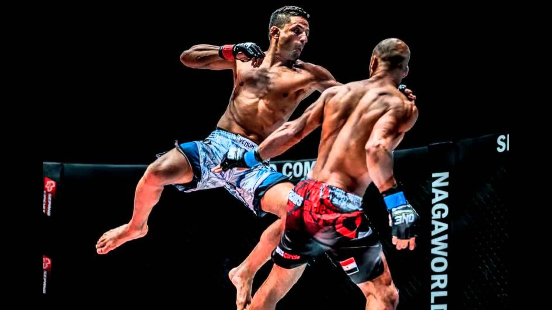 Boxing Ring Wallpaper Hd Mixed Martial Arts Wallpaper 65 Images
