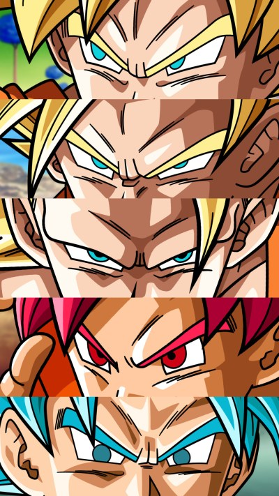 Dragon Ballz Wallpapers (73+ images)