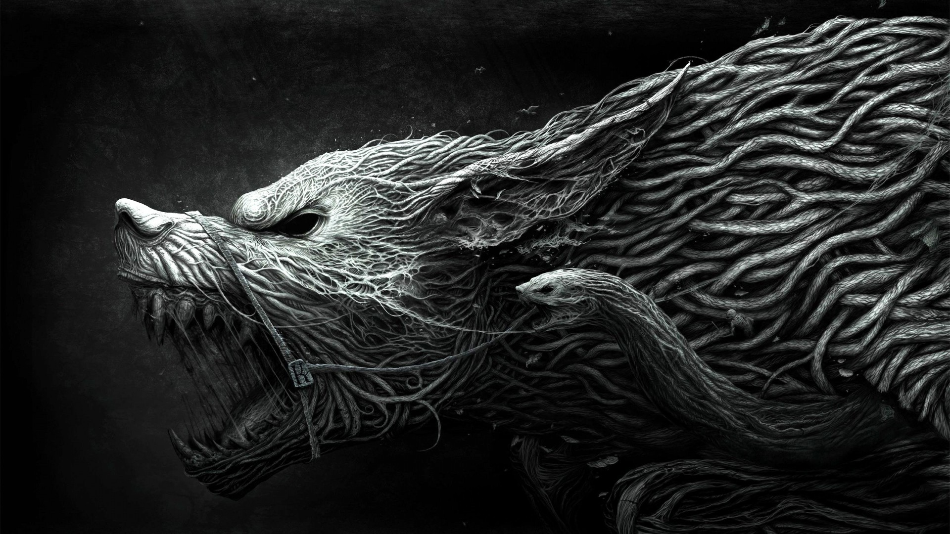 Iphone Wallpapers Hd Zedge Wolf Wallpaper For Iphone 72 Images
