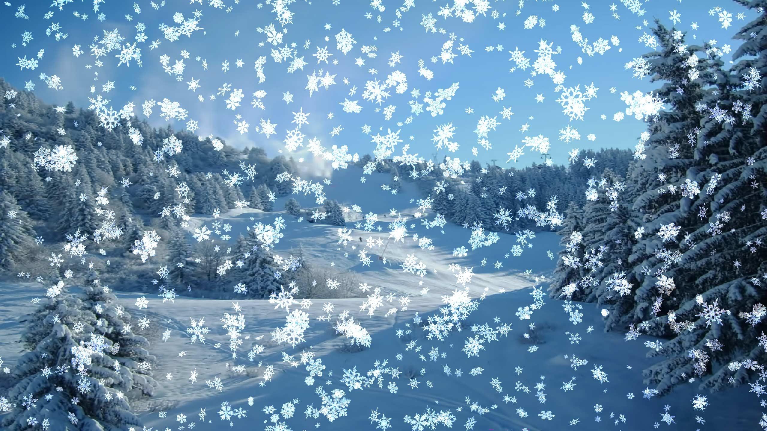 Falling Snow Live Wallpaper For Pc 3d Animated Desktop Wallpaper 39 Images