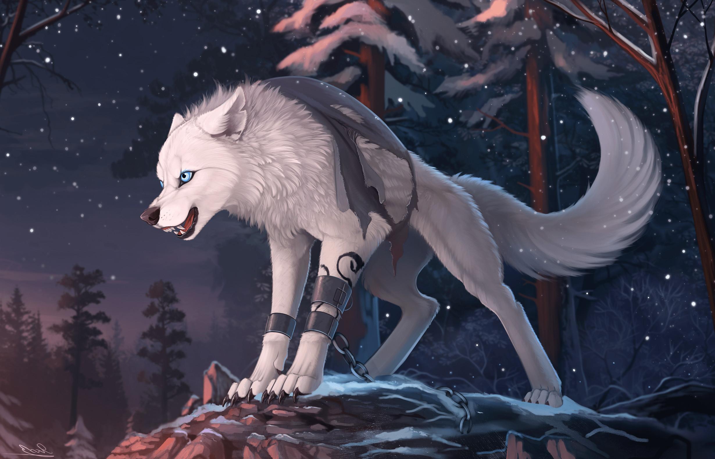 Gamer Girl Wallpaper Anime Furry Wolf Wallpaper 75 Images