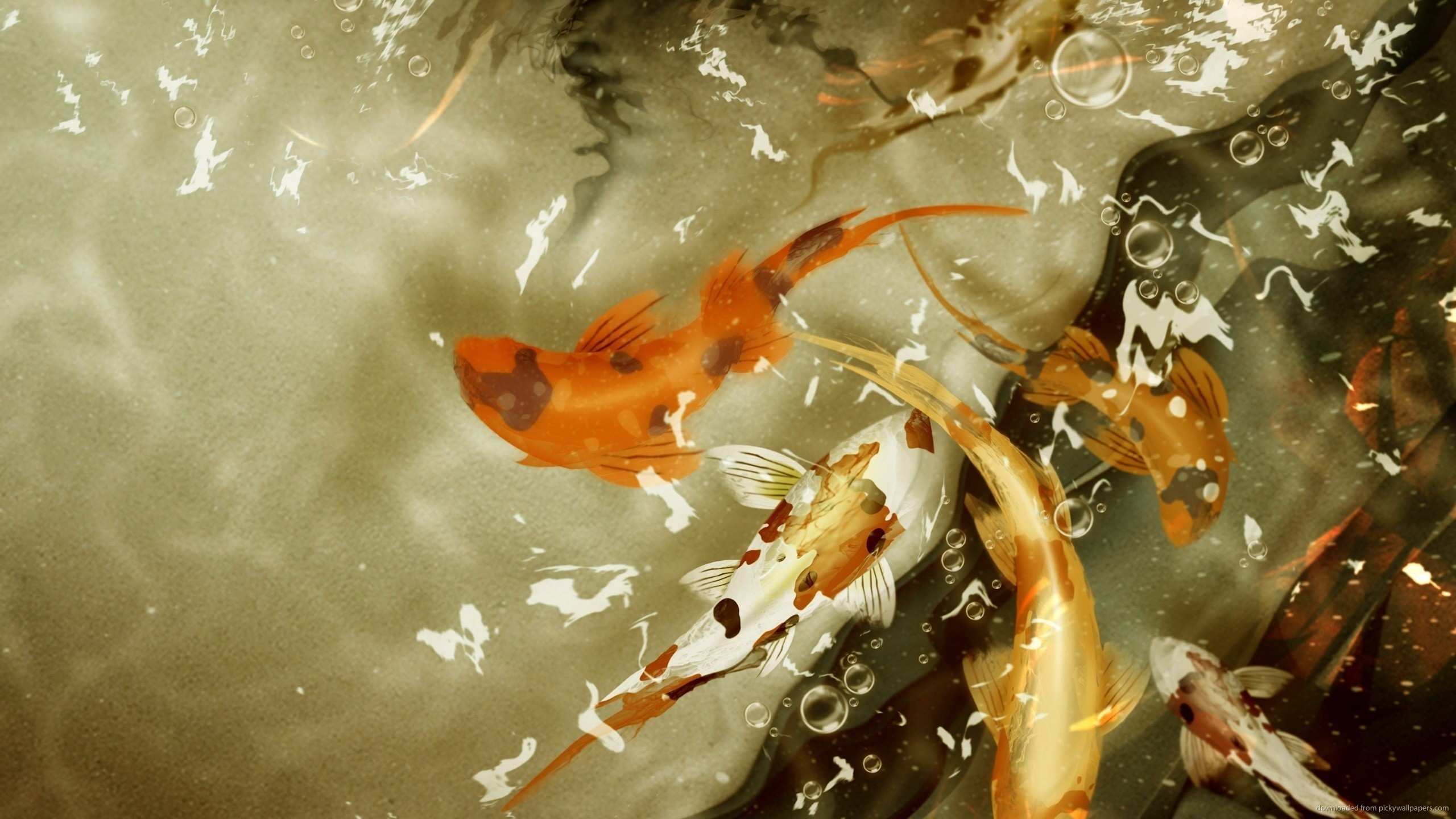 Living 3d Dolphins Animated Wallpaper Windows 7 Koi Live Wallpaper For Pc 41 Images