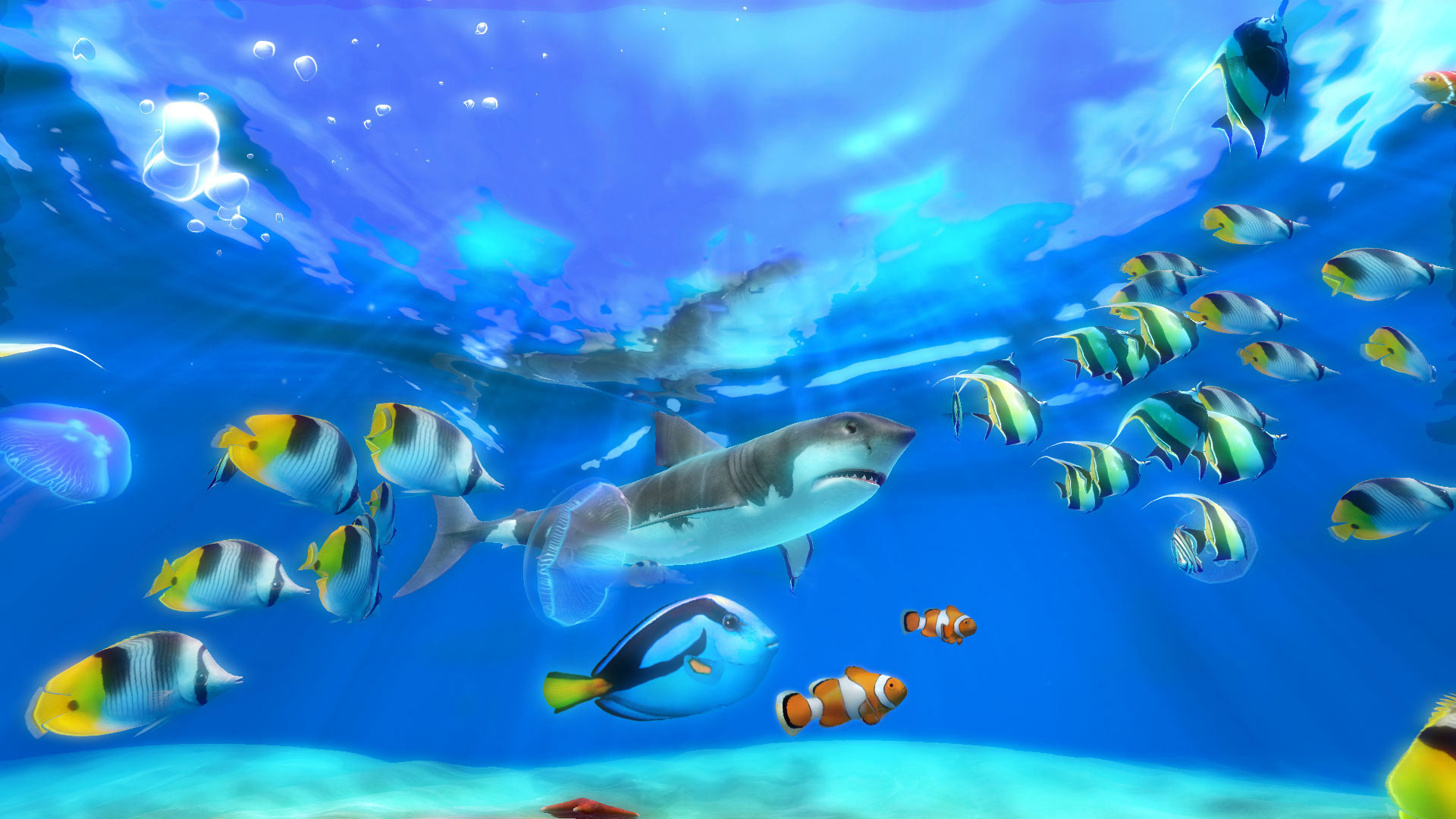 Sim Aquarium 3d Live Wallpaper Aquarium Live Wallpaper For Pc 55 Images