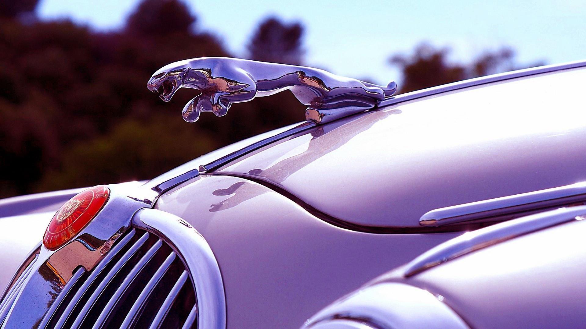 The Punisher Wallpaper Car Jaguar Logo Wallpapers 64 Images