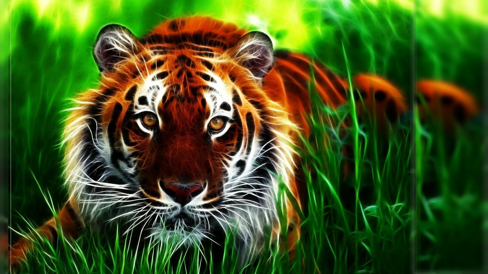 Clemson Tigers Iphone Wallpaper Clemson Wallpapers 66 Images