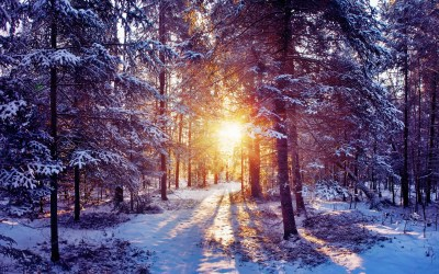 Beautiful Winter Wallpapers (60+ images)