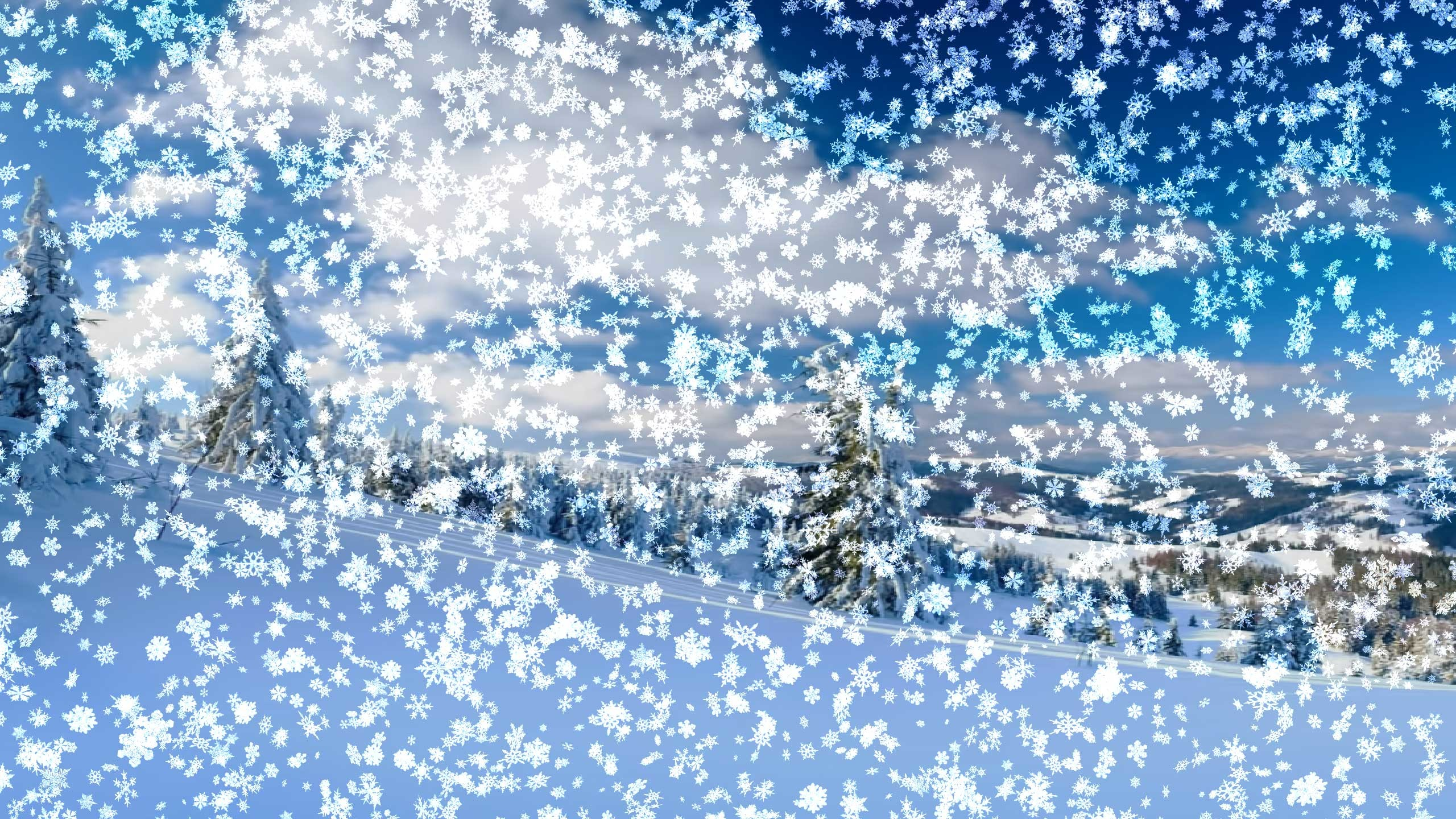 Sakura Falling Live Wallpaper Downloads Live Snow Falling Wallpaper 54 Images