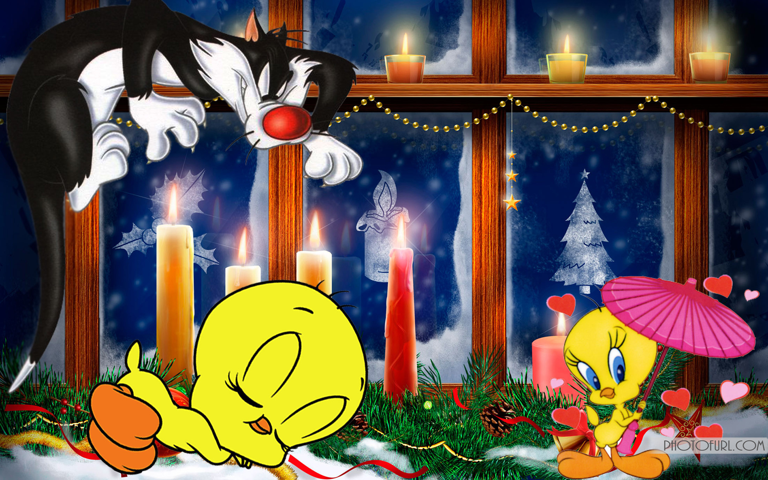 Cute Cat Wallpapers High Resolution Looney Tunes Tweety Bird Wallpaper 61 Images