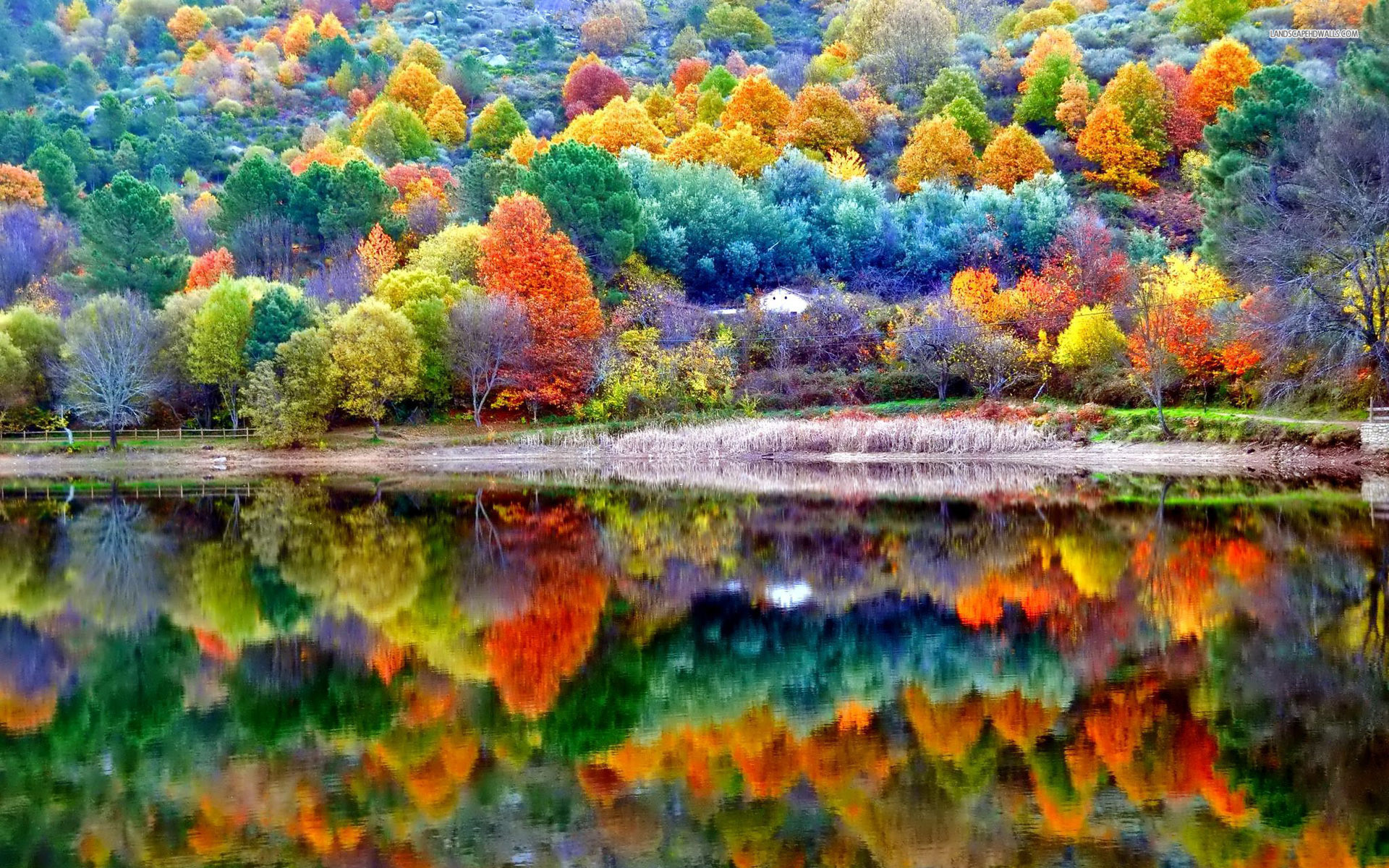 Galaxy S5 Fall Wallpaper Beautiful Fall Backgrounds 50 Images