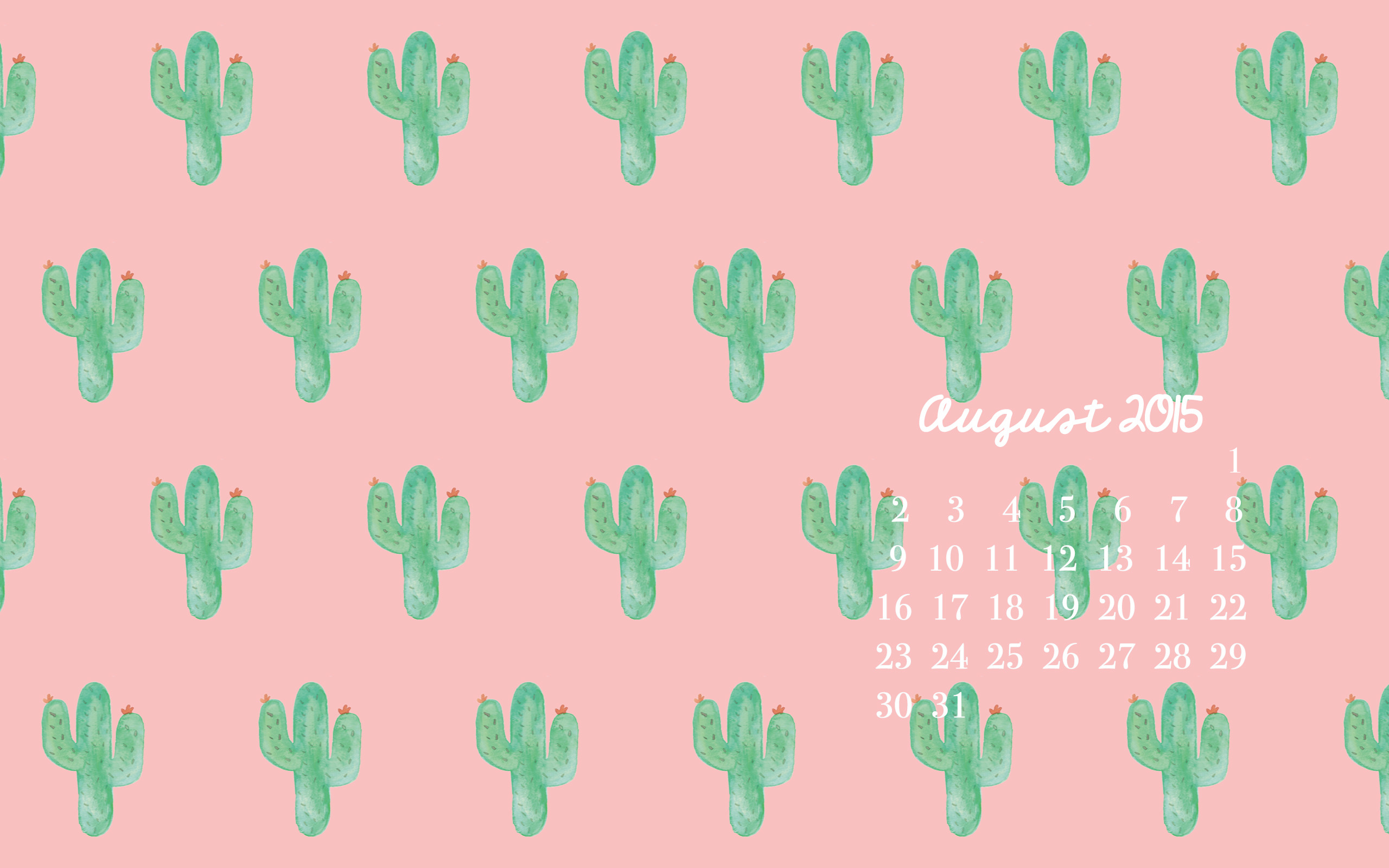 Cute Cactus Wallpaper Macbook Pretty Computer Backgrounds 49 Images