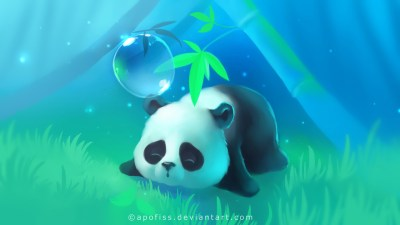 Panda HD Wallpaper (79+ images)