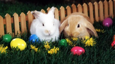 Easter Wallpapers for Desktop (64+ images)