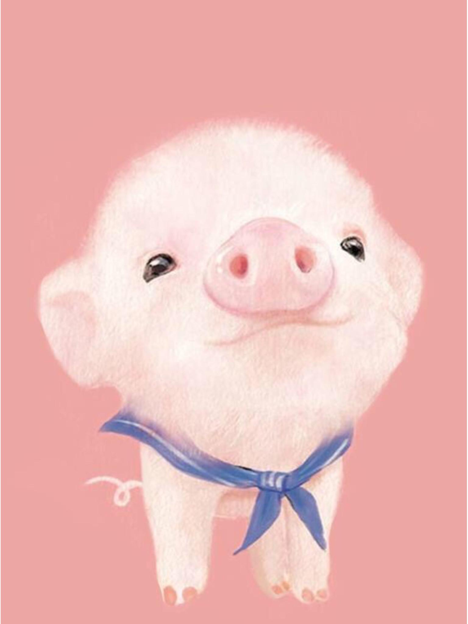 Cute Piglets Wallpaper Piglet Backgrounds 53 Images