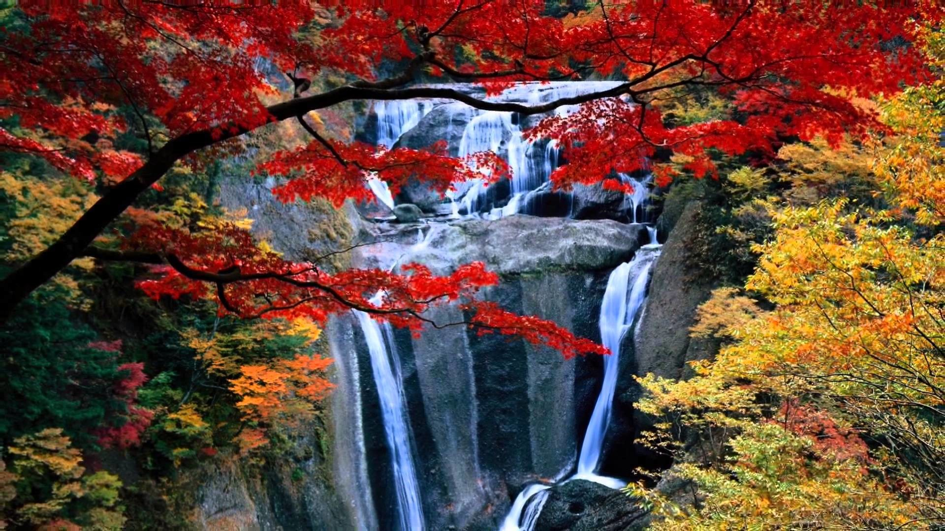 Earth 3d Live Wallpaper Mac Waterfall Wallpapers And Screensavers 57 Images